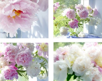 Peony Art Set, Four Peony Photographs, French Country Decor,  Still Life Photography, Shabby Chic Home, Flower Print Set , Pink Decor