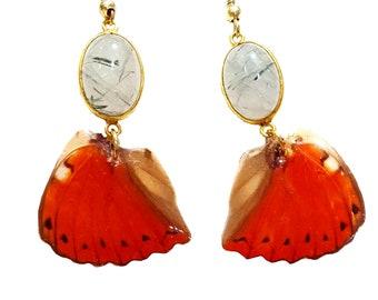 Real Handmade Butterfly Wing Earrings -Sterling Silver - Red Glidder Butterfly Wing Jewelry