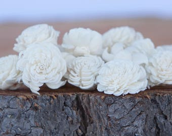 Ivory Mini Chorki Sola Flowers - Set of 15, Cream Sola Flowers, Mini Chorki Sola Flowers, Sola Flower, Wood Sola Flowers, Craft Flowers