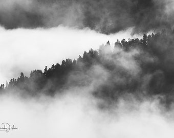 Tree Photography, Fog Photography, Cloud Photography, Tree Print, Tree Photo, Nature Photography, Landscape Photography, Trees and Fog Print
