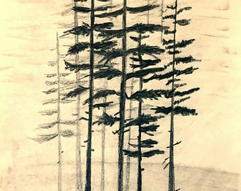 Foggy Forest Tall Pine Trees Outdoor Wilderness Mystic Woods Abstract Art PRINT By Scott D Van Osdol Nature Pencil Sketch Drawing Trail