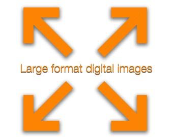 "Upsize digital download up to 36"" x 24"" @ 300dpi  (7200 x 10800 pixel)"