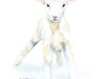 White Lamb Watercolor Painting - 11 x 14 - Giclee Print - Nursery Art
