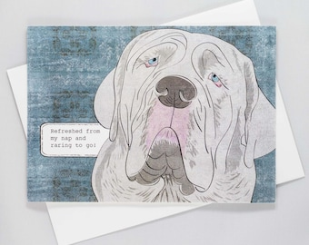 Refreshed from my nap and raring to go! Funny Dog Card, Mastiff, Blank Inside, Just for Fun, Dog Humor, Blank Dog Card, Pet humor
