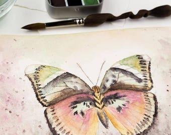 PAPILLON TRAVEL Set- Artisan Handmade Watercolor paint Set