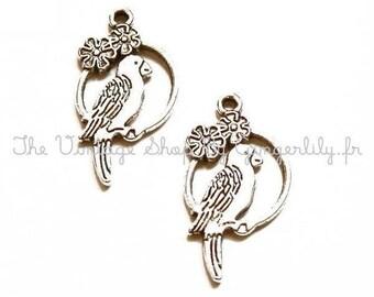 2 metal Tibetan silver Parrot charms