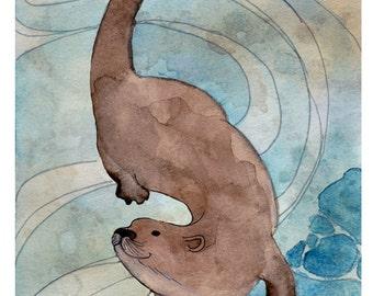 River Otter -  Otter Illustration