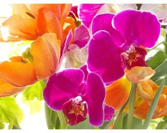Orchid Art,  Tulip Art, Flower Photography, Magenta Orange Decor,  Neon Wall Decor, Floral Still Life, Colorful Art