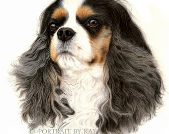 Custom Dog Portrait,CAVALIER KING Charles Spaniel, Custom pet drawing, animal portrait, pet portrait , dog portraits, personalized pet