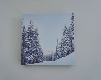 Canvas Print Wasatch Mountains