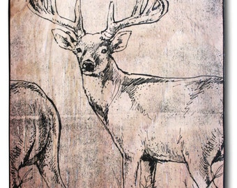 """Whitetail Buck, print on wood, 14.5 x 10.5"""", hand-colored red, deer print, deer head, Whitetail deer, home decor, wall art"""