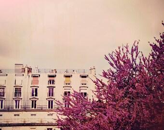 Bloom - Paris Landscape Photography Print