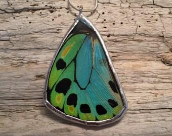 Butterfly jewelry, handmade butterfly pendant, real butterfly jewelry, butterfly wing Necklace, butterfly jewelry, handmade real butterfly