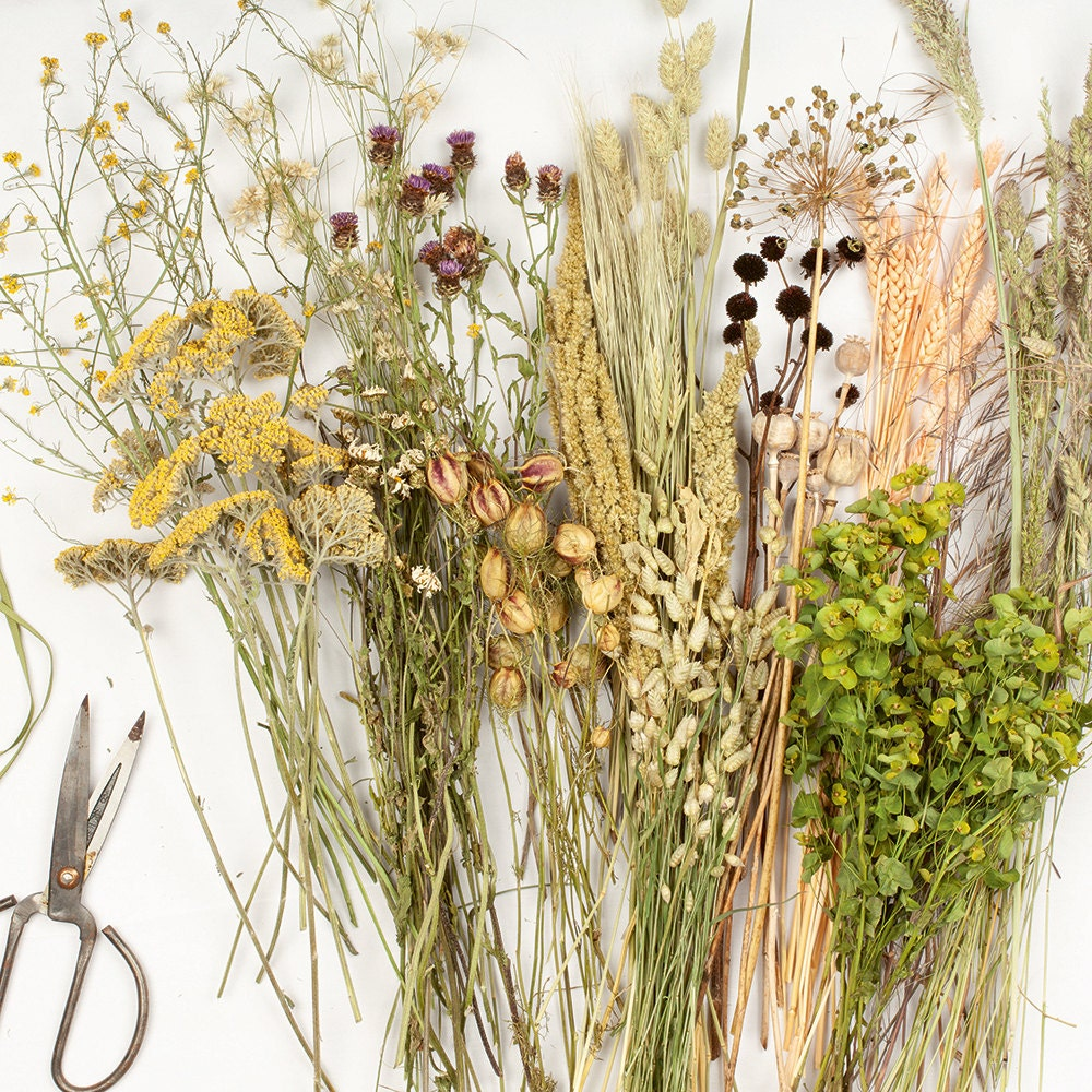 Dried flowers and shears sit atop a flat surface