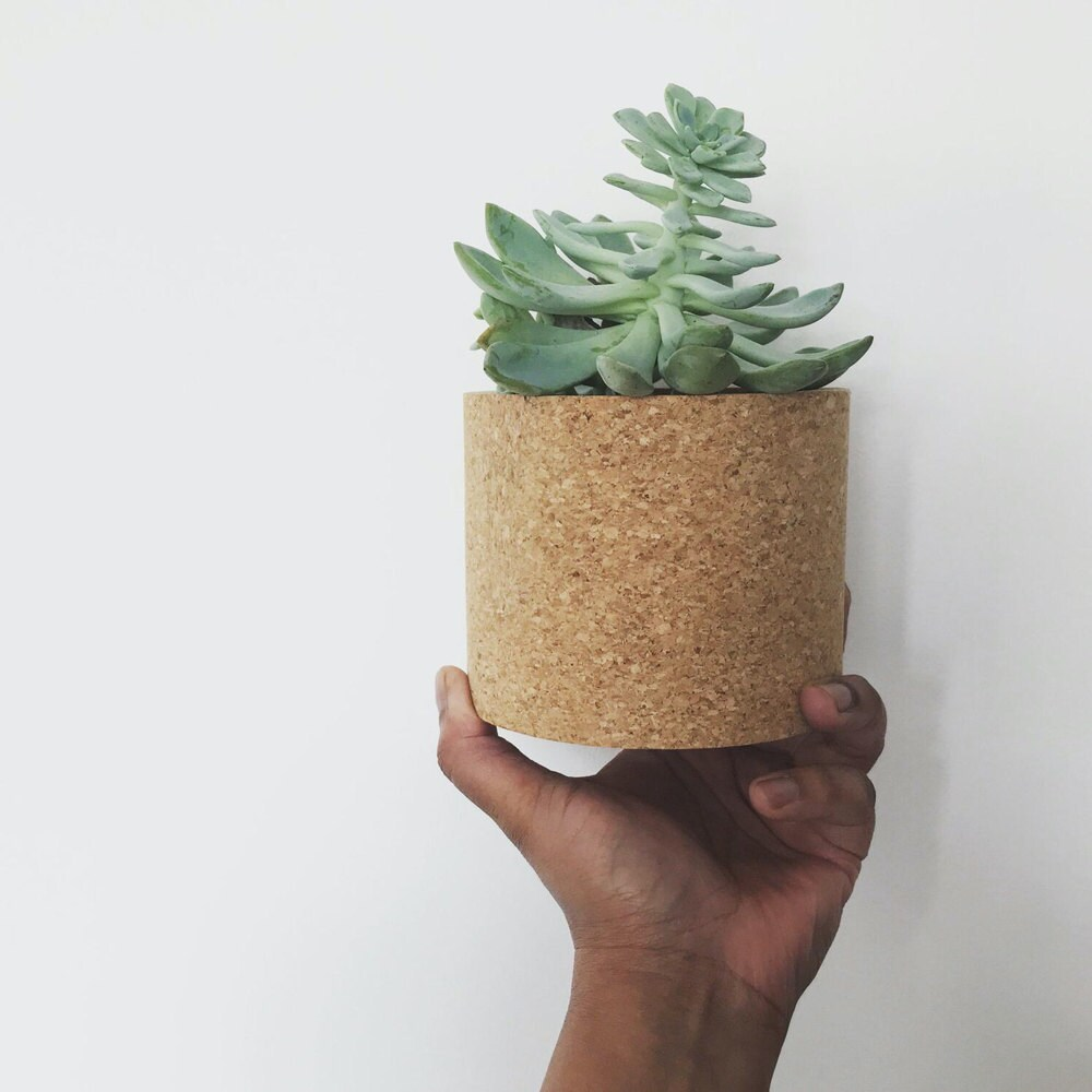 A woman holding up a cork planter with succulent inside.