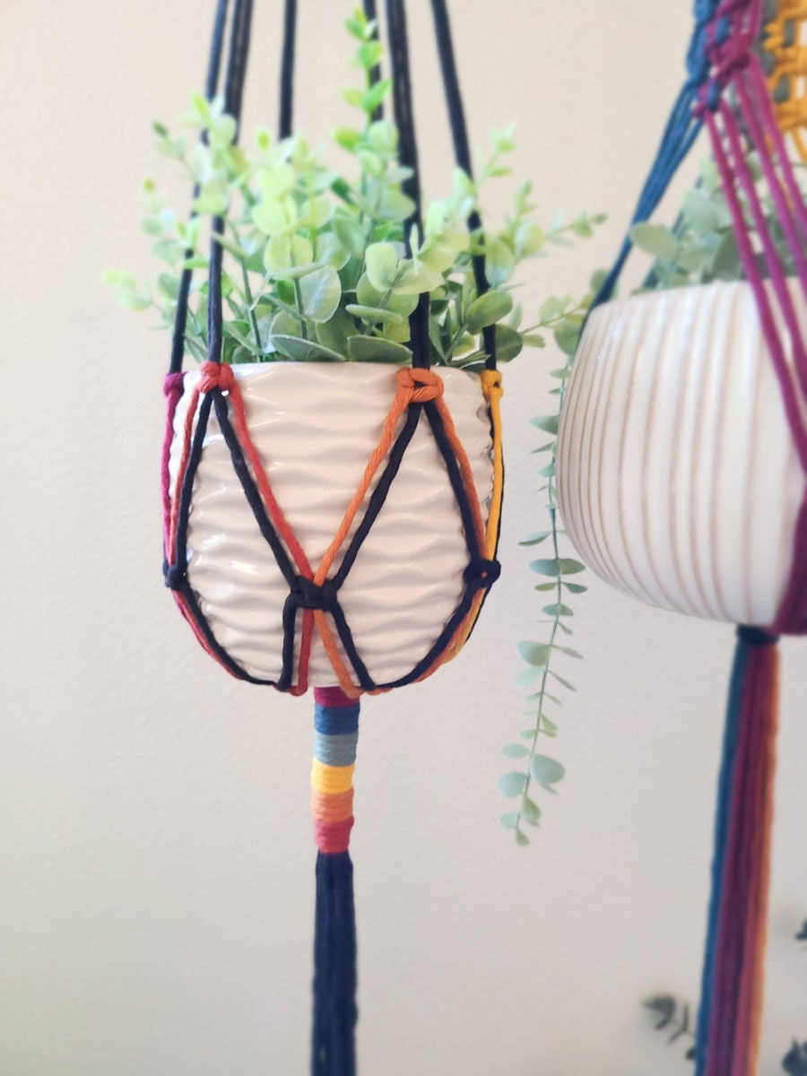 A rainbow plant hanger from Sweet Home Alberti