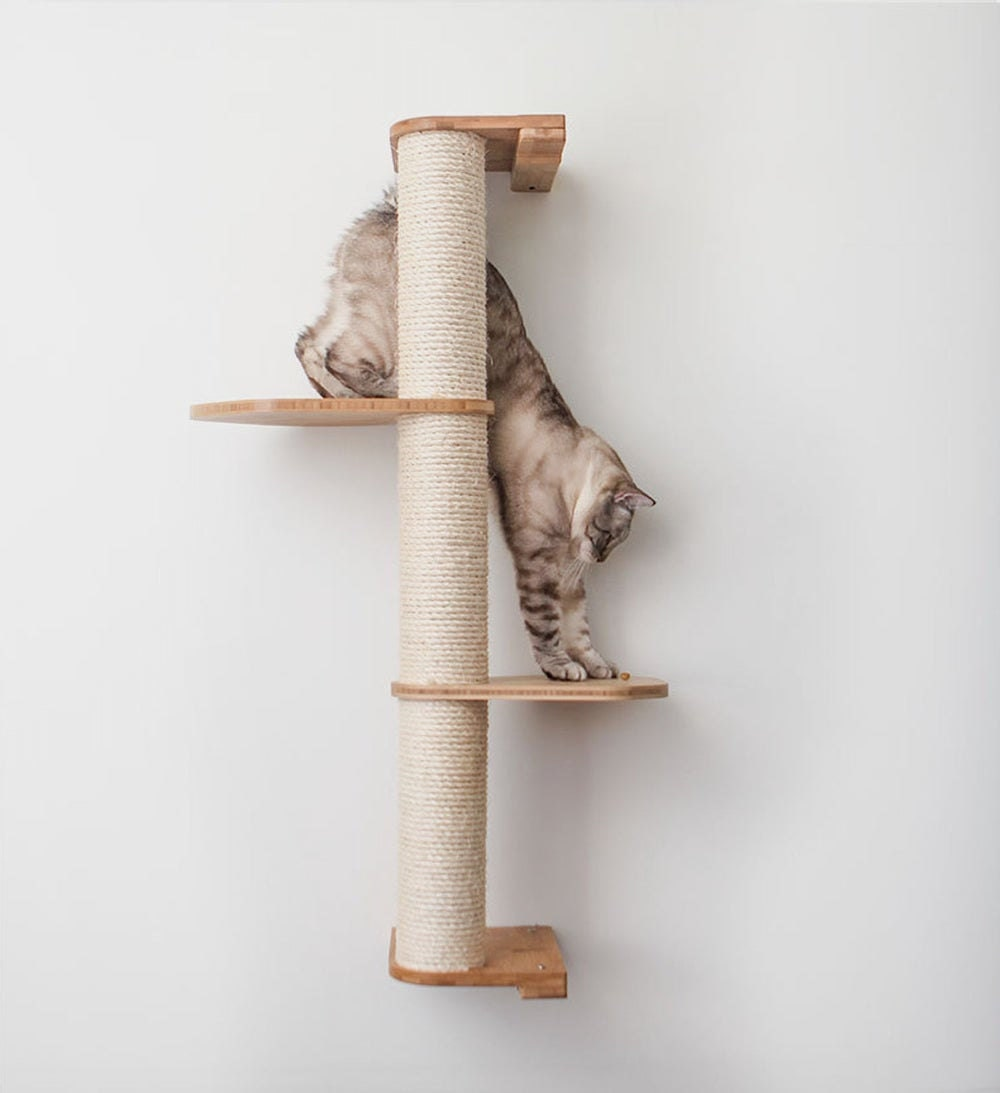 A wall-mounted sisal pole from CatastrophiCreations