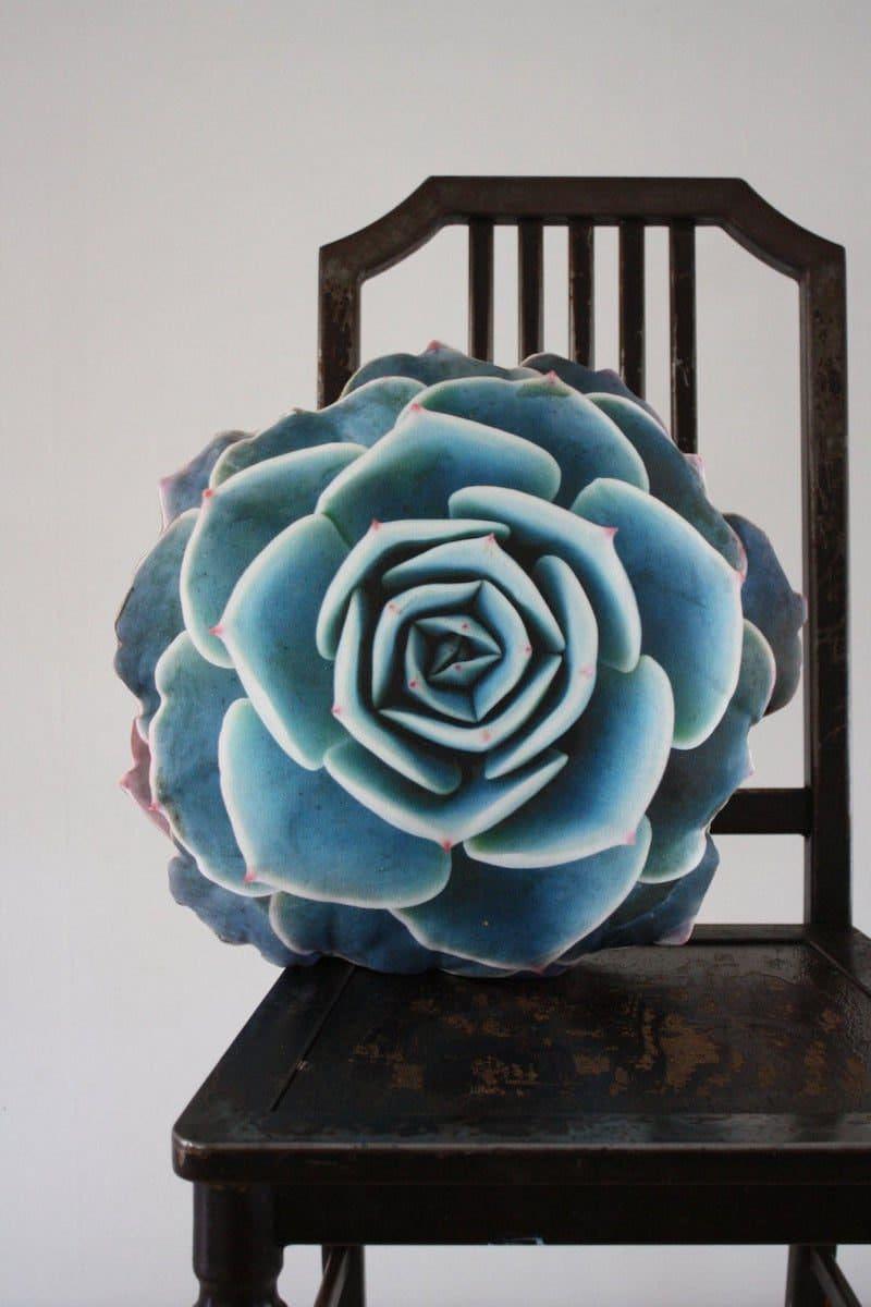 Succulent pillow from Plantillo