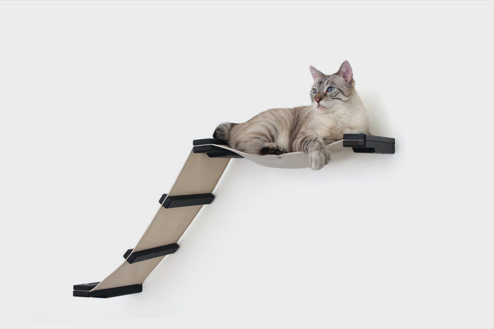 A wall-mounted cat shelf with ladder from CatastrophiCreations