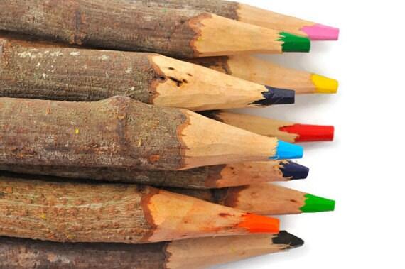 twigpencils
