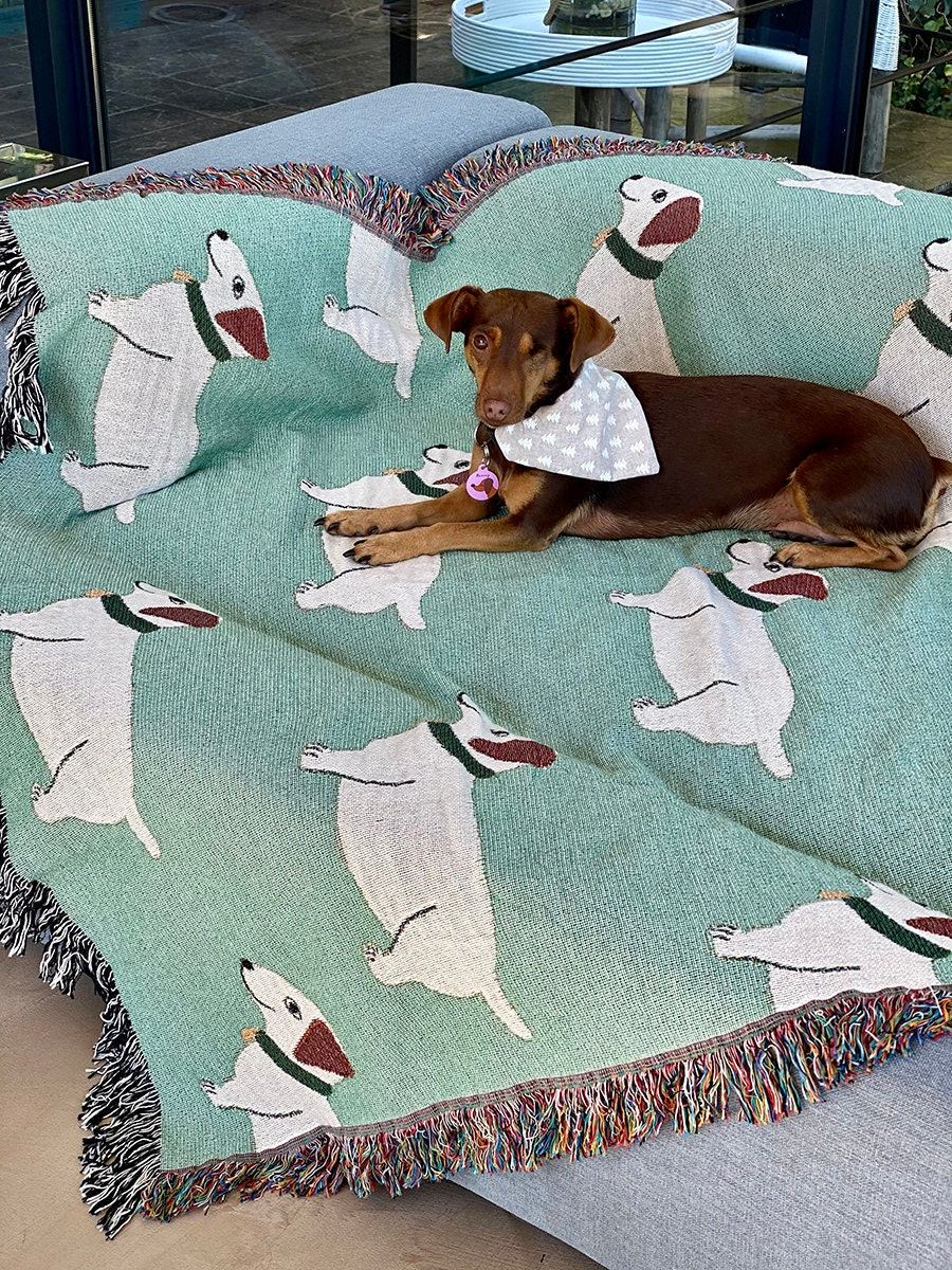 Woven dog blanket