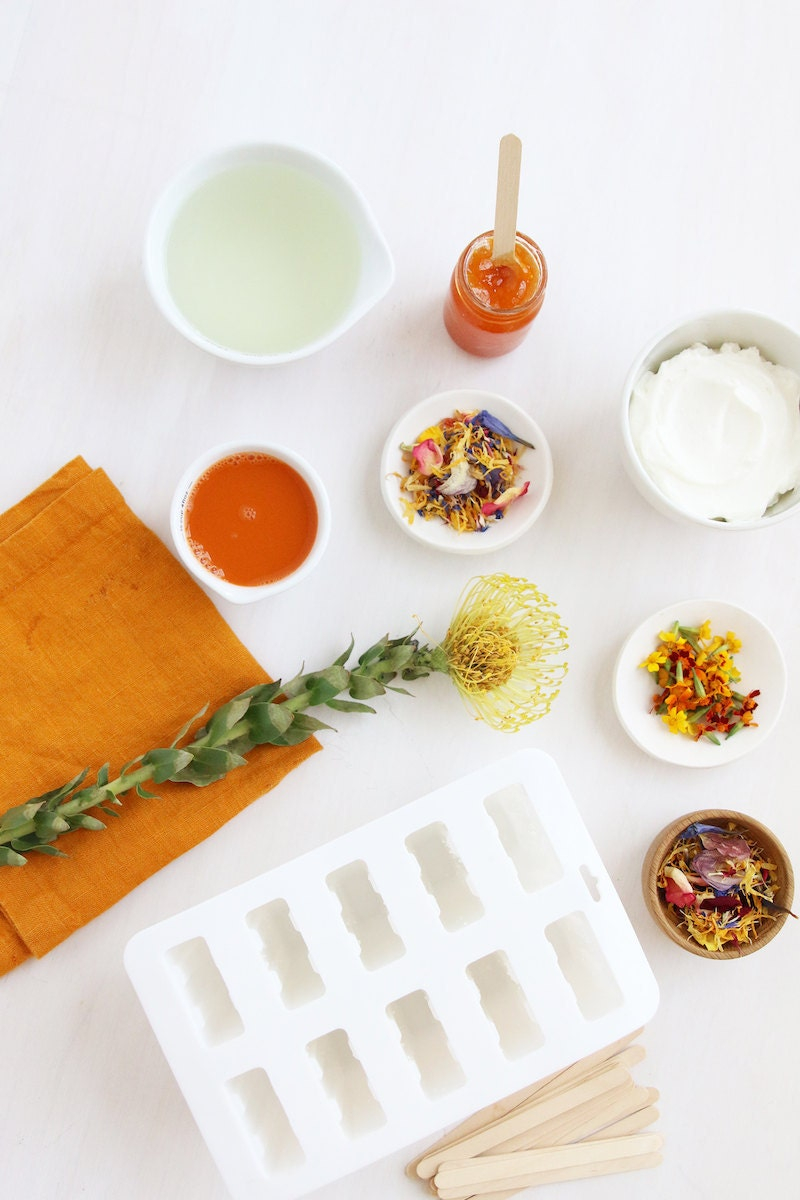 A flat lay of all the materials needed to create DIY flower-petal infused popsicles.