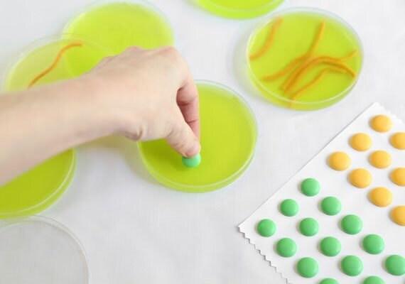 petri-dishes-decorate