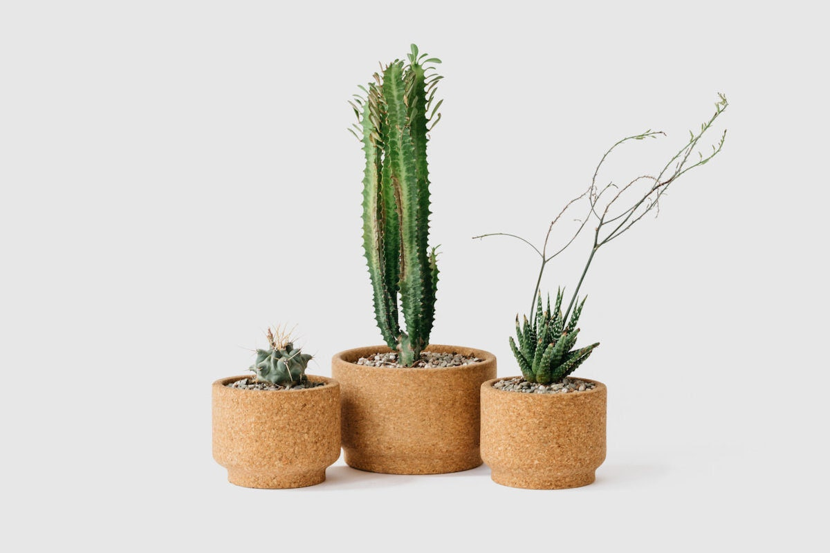 Trio of cork planters from Melanie Abrantes