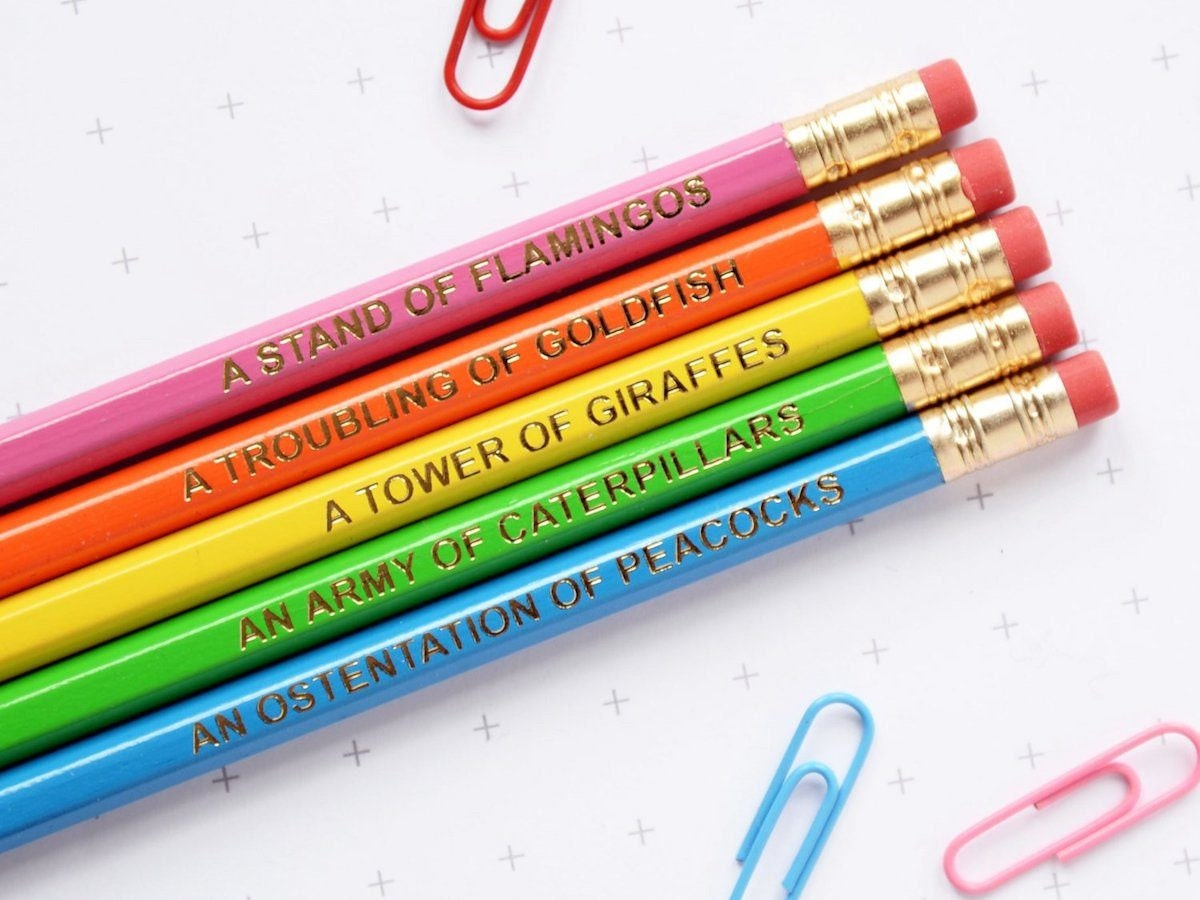 Neon rainbow-colored pencil set labeled with collective nouns for various animals