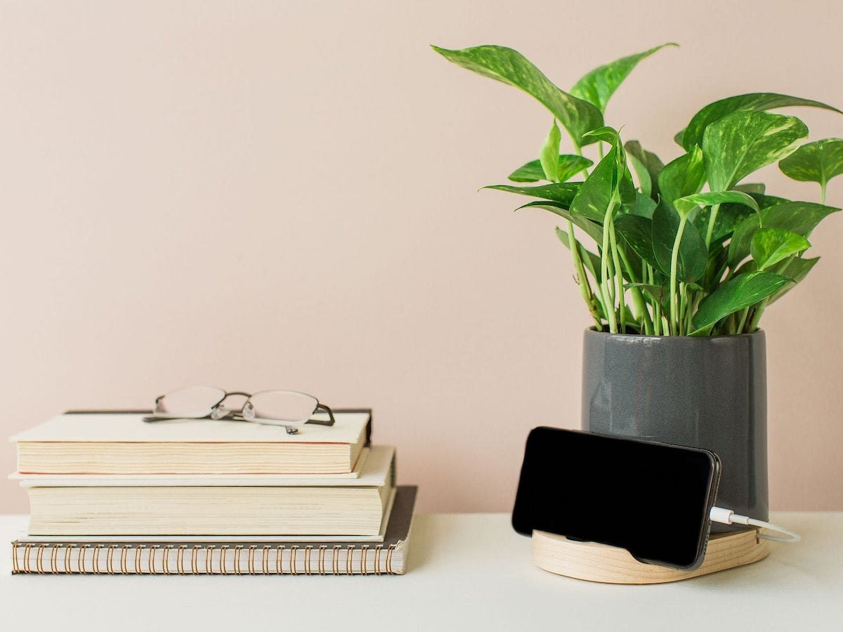 Phone dock planter from STAK Ceramics