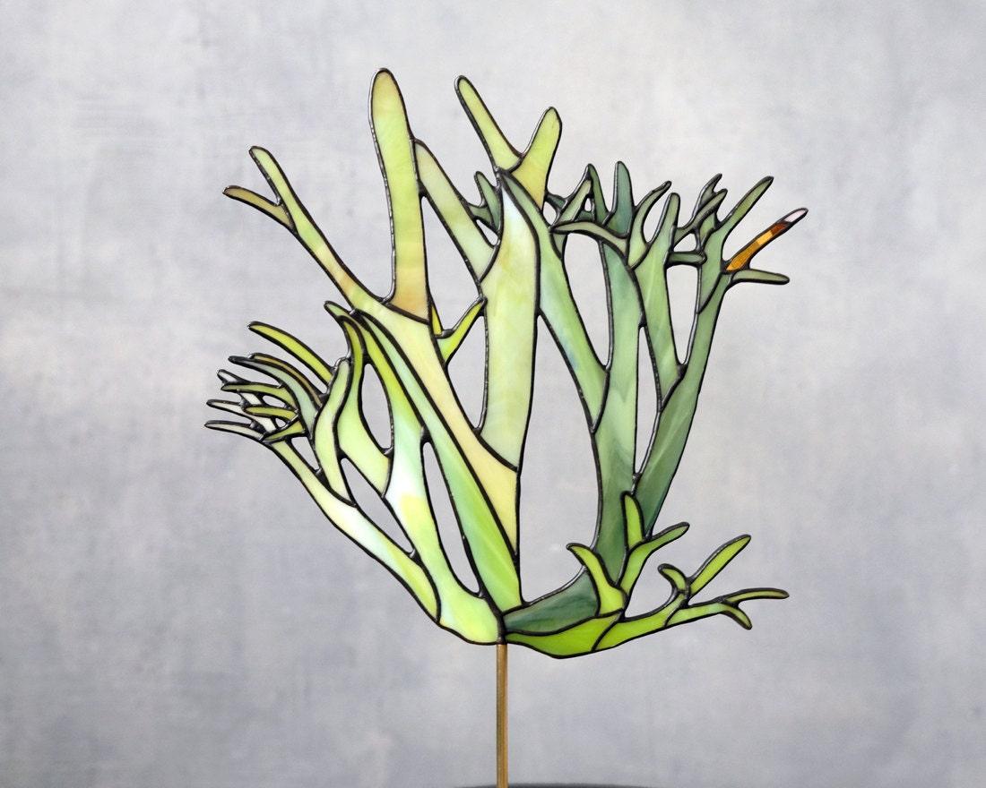 Stained glass Elkhorn fern suncatcher from Elena Zaycman