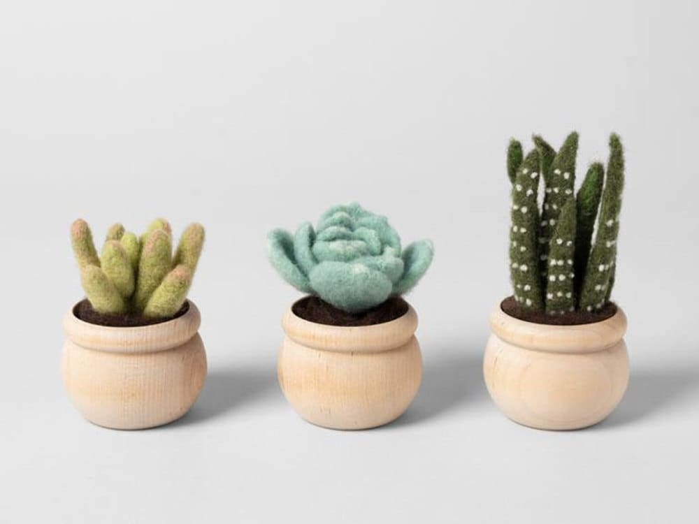 A needle felted succulent kit from Felted Sky