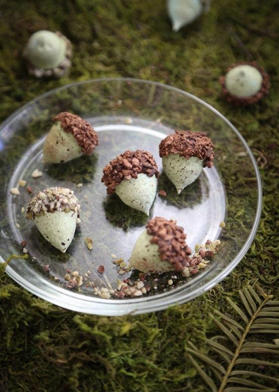 etsy-heather-baird-sprinklebakes-acorns-final