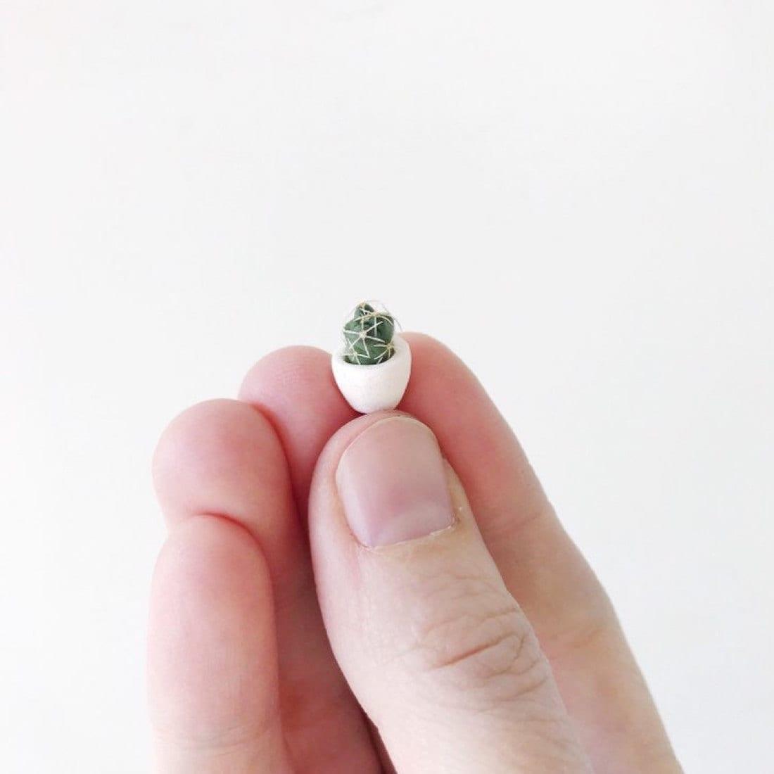 A miniature cactus planter from Tierra Sol Studio
