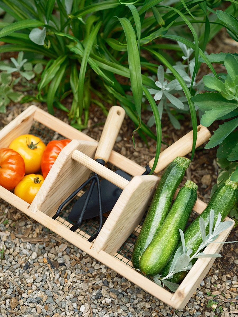 A basket and tools for gardening