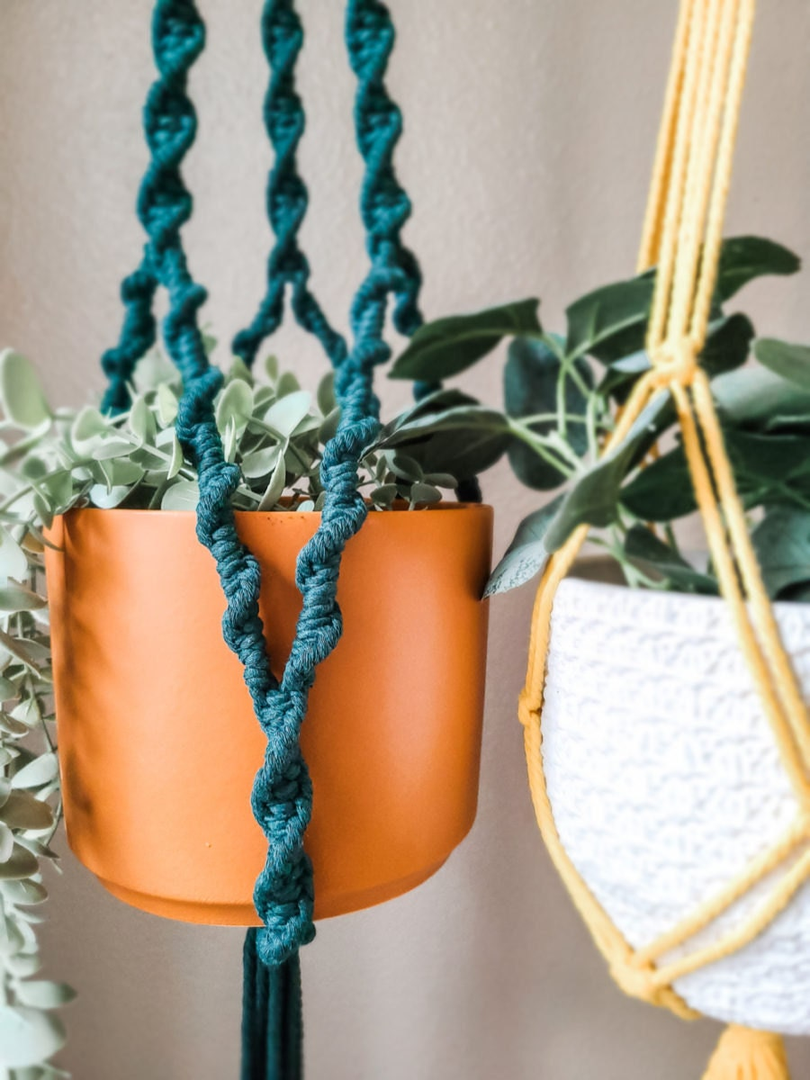 Detail on a colorful macrame hanging planter from Sweet Home Alberti