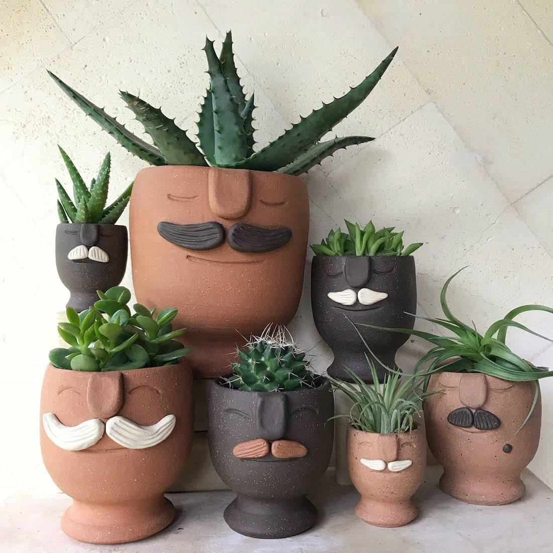 """Mustache """"moodie"""" planters from Aloe Frost"""