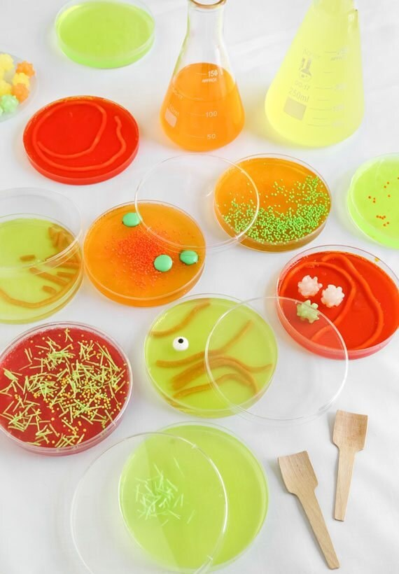 petri-dishes-final