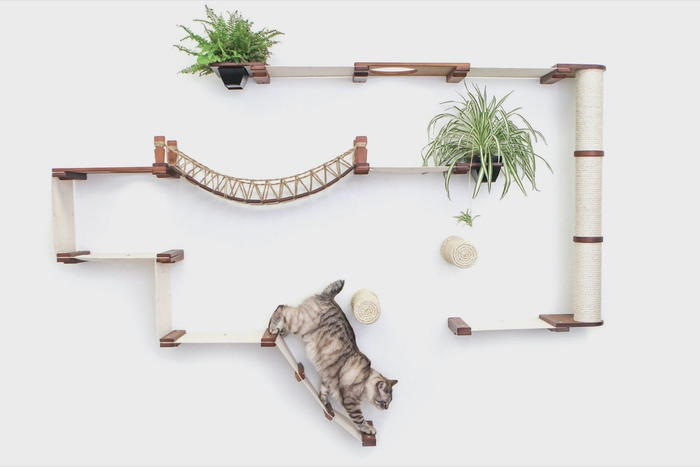 A wall-mounted cat furniture system from CatastrophiCreations