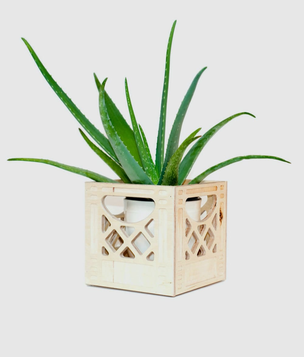 A mini wood crate planter from WAAM Industries