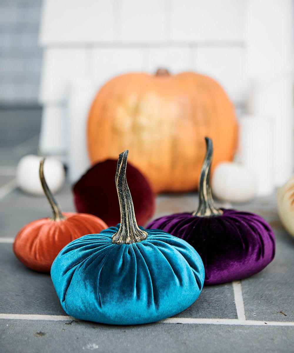 Luxe velvet pumpkins in assorted hues from Your Heart's Content