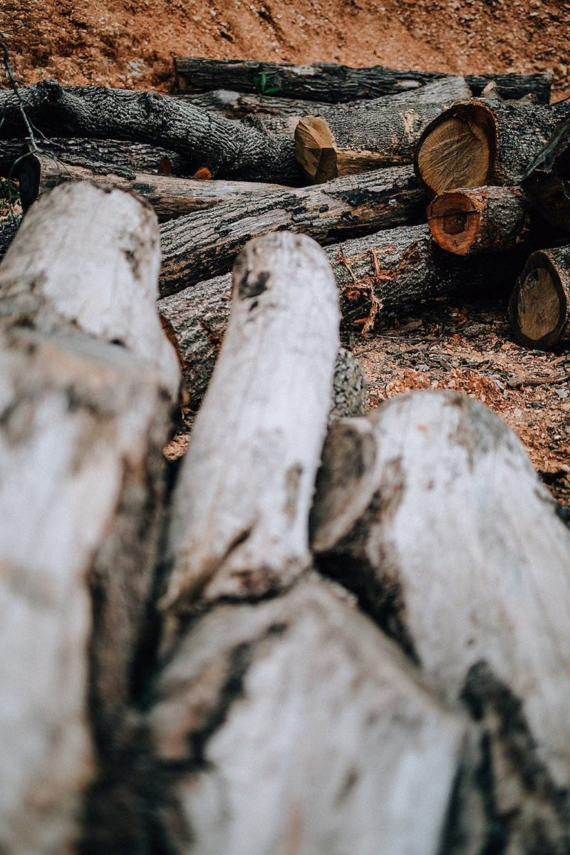 Wood awaiting use by CBYMCREATIVE