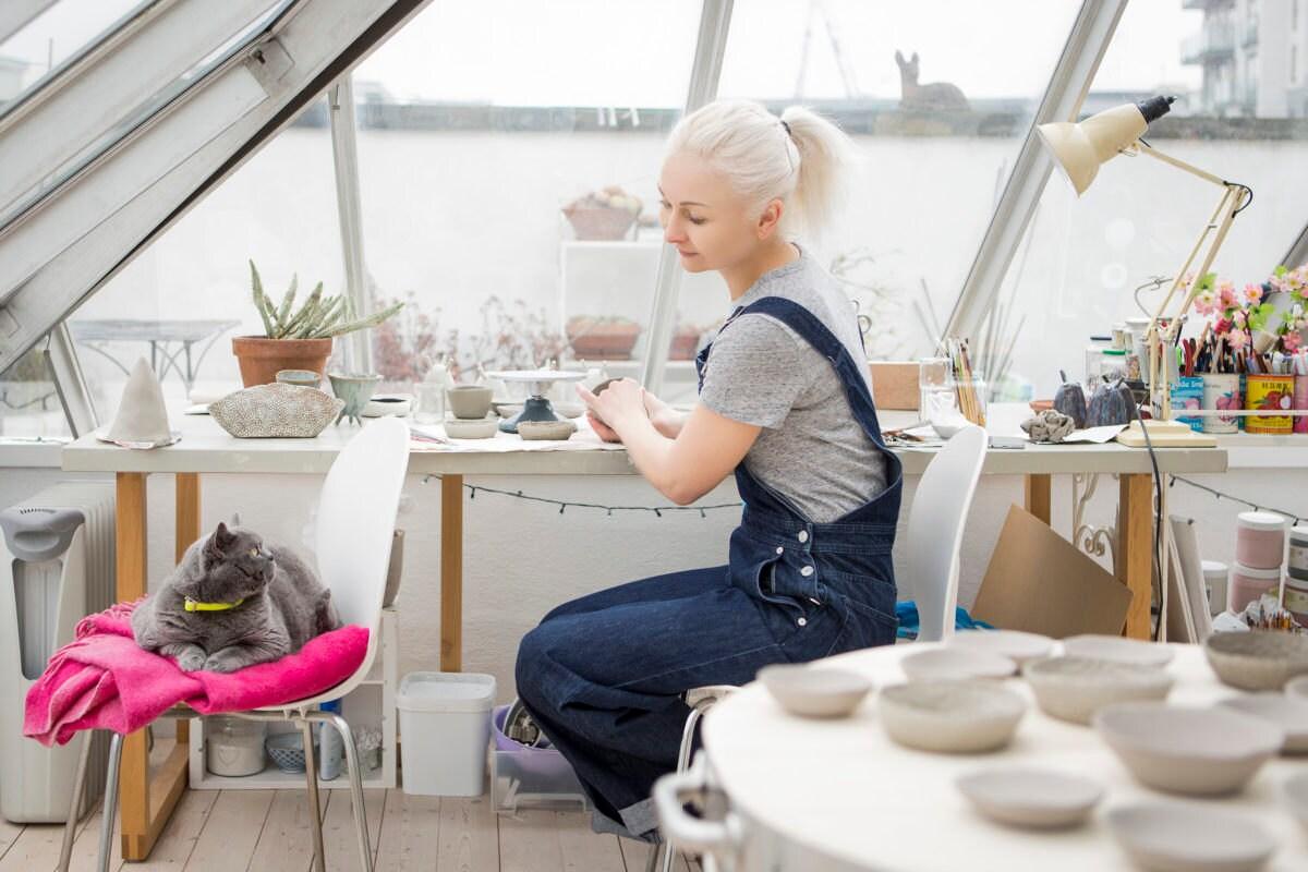 cat in studio