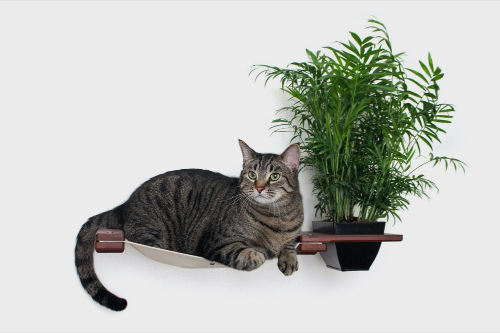 A cat hammock with planter from CatastrophiCreations