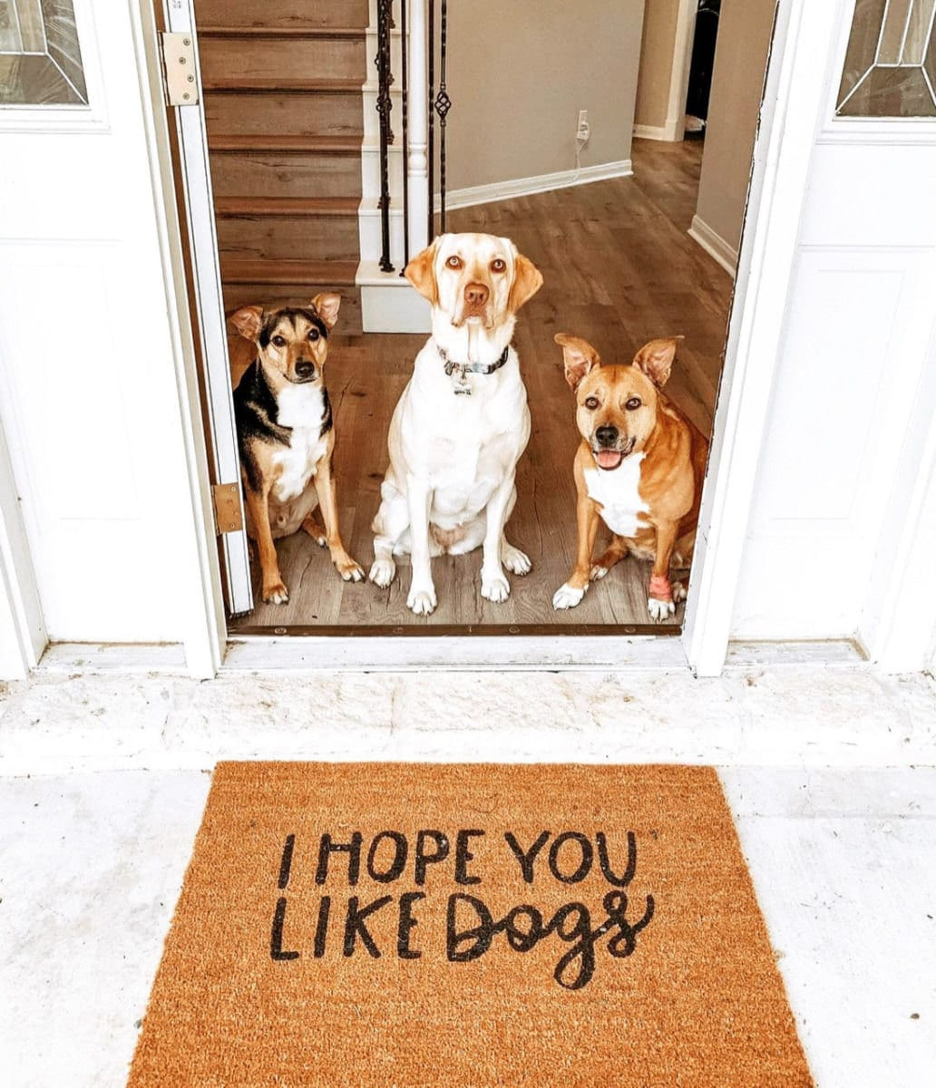 """""""I Hope You Like Dogs"""" doormat from The Sycamore House"""