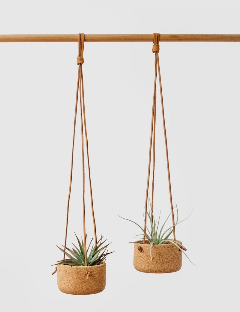 Two cork hanging planters holding air plants