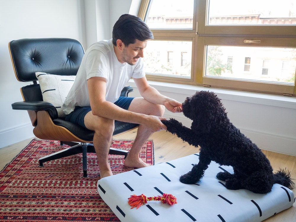 A man and his dog model their matching pillow and dog bed.