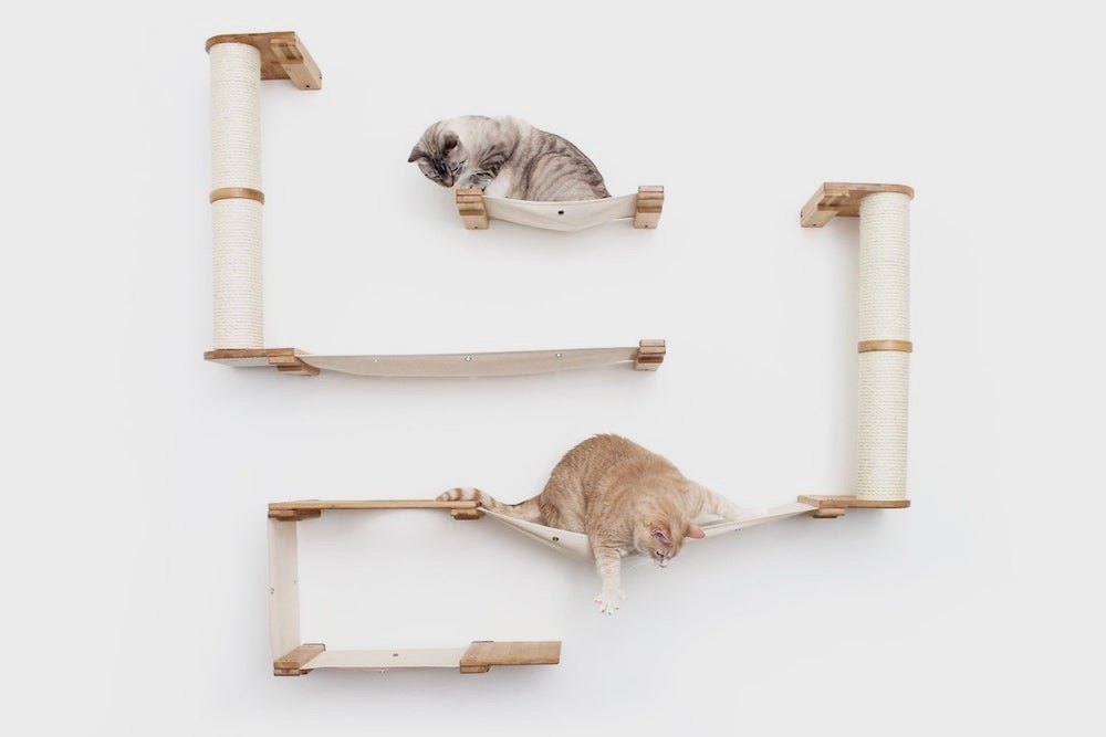 A wall-mounted cat tree from CatastrophiCreations