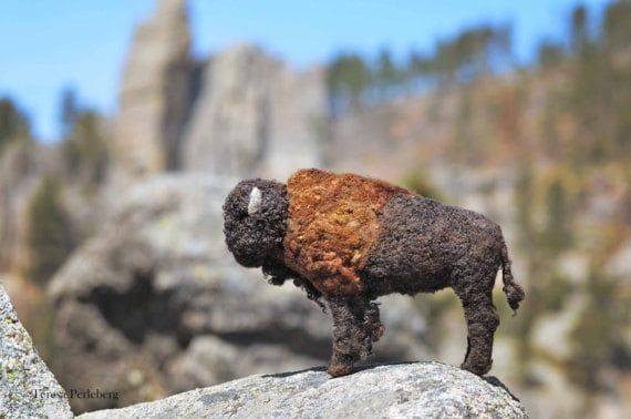 bearcreek-buffalo