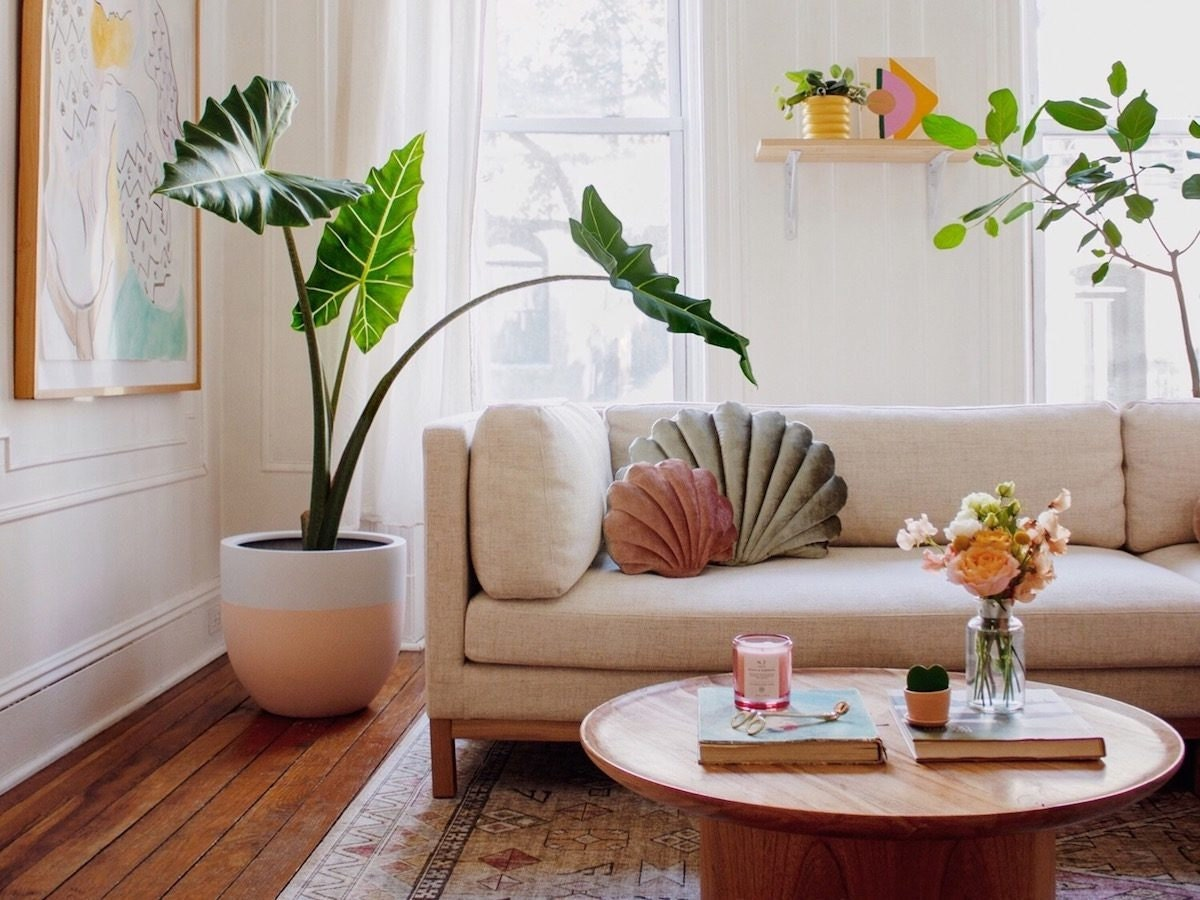Mallory Fletchall's bright and cheerful living room